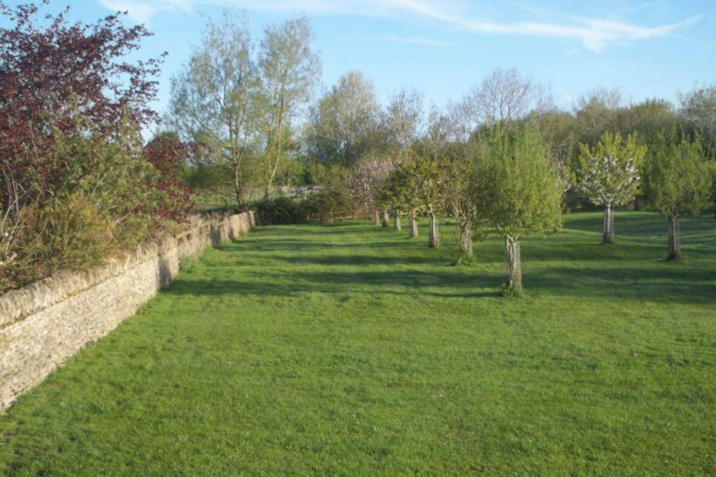 View from the rear overlooking the orchard