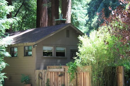Vacation In The Cazadero Redwoods In A Quiet House Off The Beaten Path. Stay during the week between October and April (Winter Rates) and get 3 nights for the price of 2!