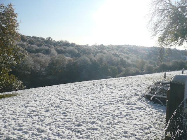 Field view in the snow