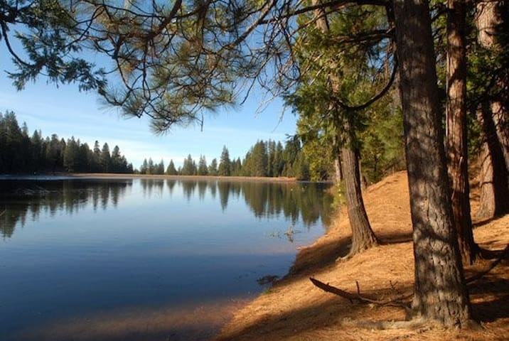 Take a quick hike to Forebay Lake, less than a 5 minute walk from the cabin.