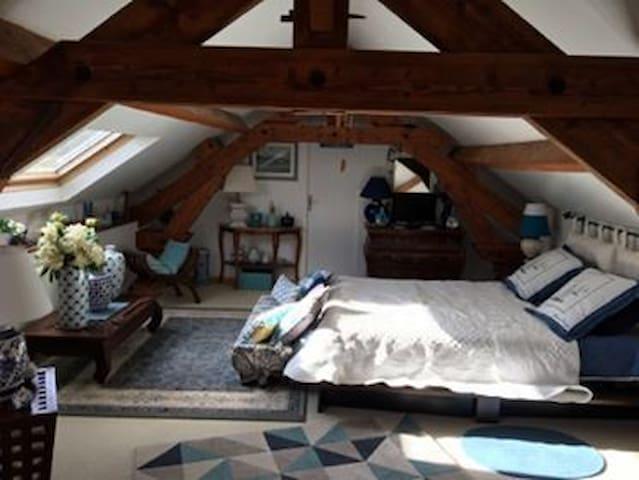 Grande chambre bleue avec son lit Queen Seize.