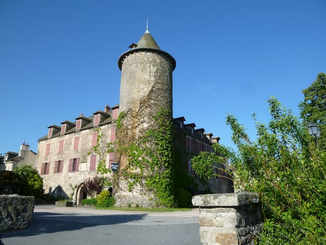 LES CHAMBRES D'HOTES DU CHATEAU - Salles-Curan - Bed & Breakfast