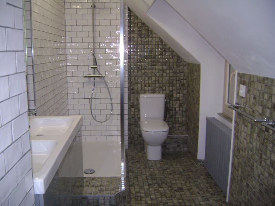 Walk in shower and toilet