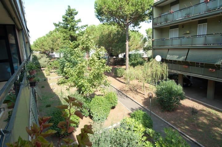 Roma TorVergata quiet room in the green