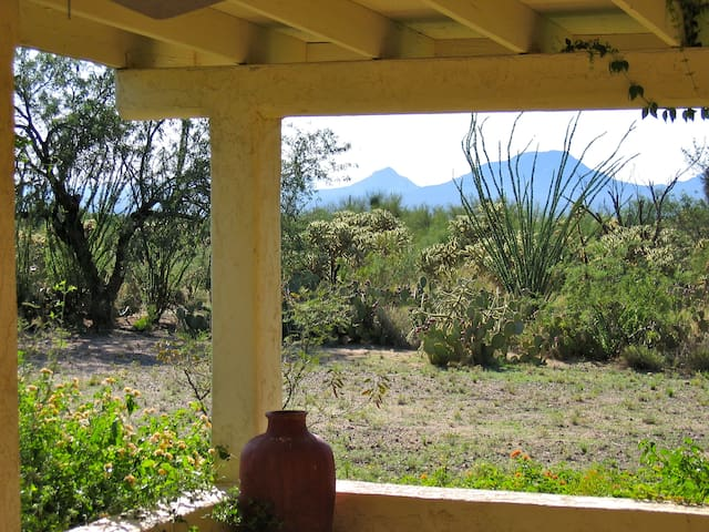 Timeless Retreat near Tucson