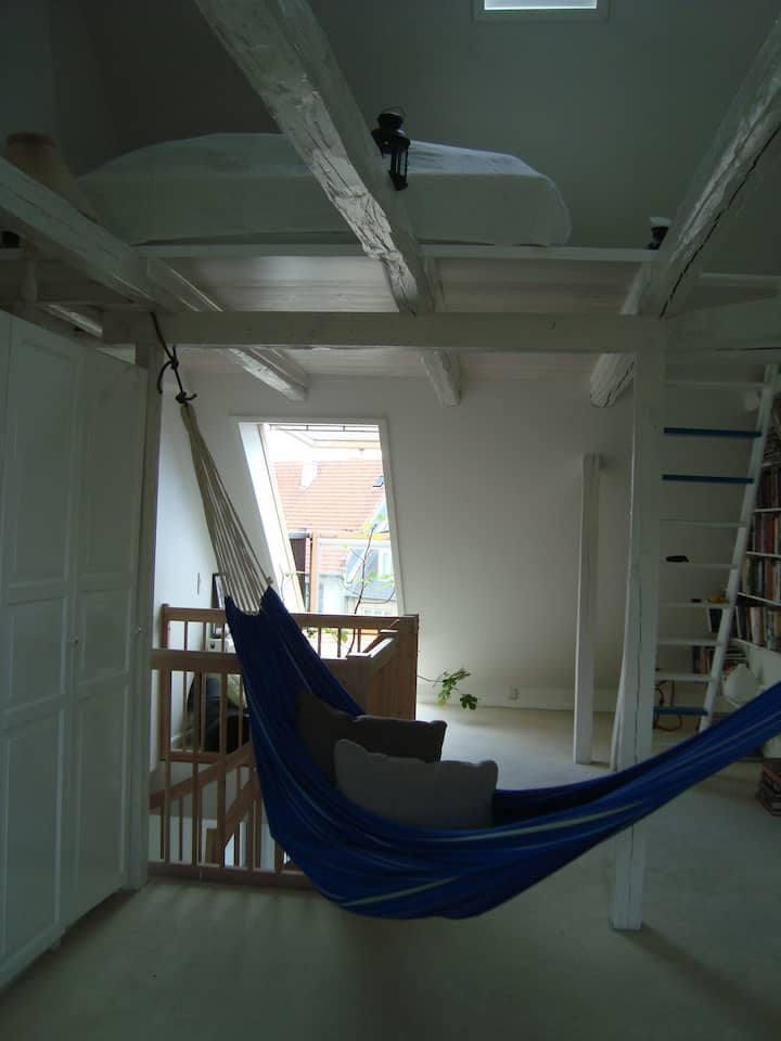 Penthouse apartment in 2½ level