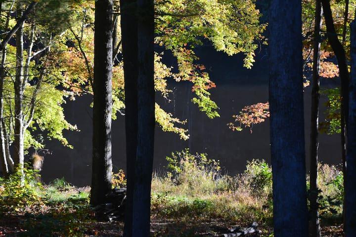 Sourwood Lake Cabin