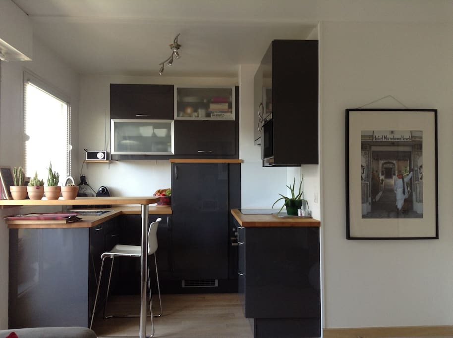 Modern opened kitchen with all commodities
