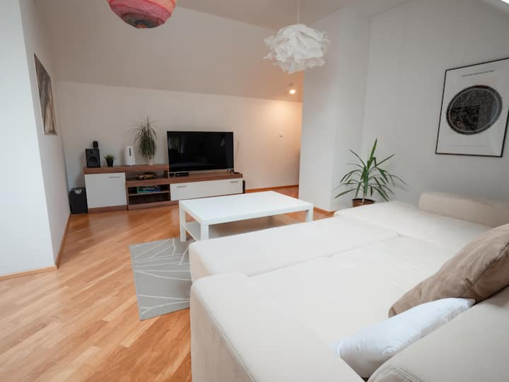 Spacious Duplex in City Center of Ljubljana