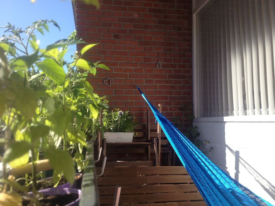 Enjoy a nap in the hammock. There is sun from 12pm - 7pm