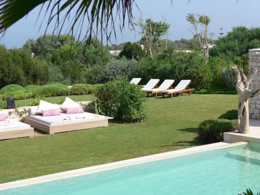 3000 M2 de Jardin privatif, piscine a débordement, végétation luxuriante...