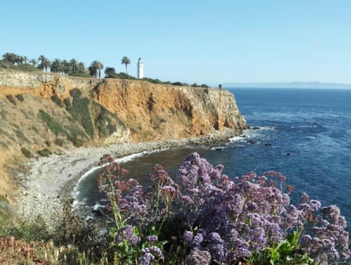Amazing Beach Cliffs Location!