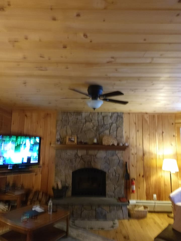 Comfy Home in the Adirondacks, for winter & summer