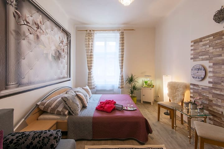 Prague Private Apartment  Non Stop 24/7