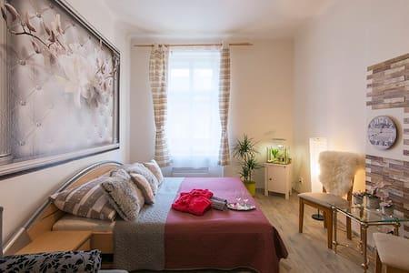 Prague Private Apartment  Non Stop 24/7