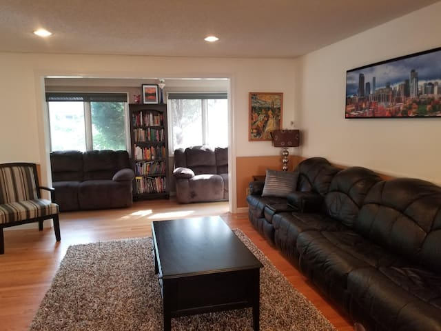 Living room area with library nook and 2 recliner couches. Main couch is a queen sofa bed with new mattress.