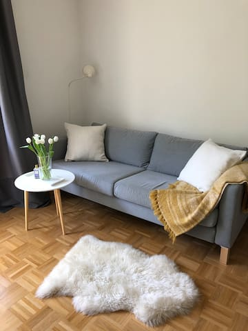 Private apartment in the city center