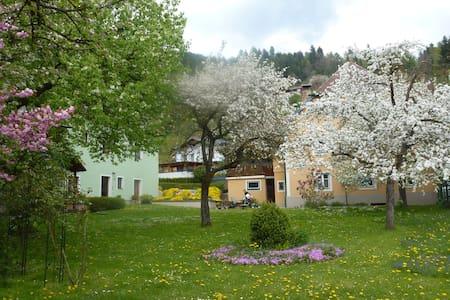 Haus Tamberger-Appartements-St.Stefan-Friesach