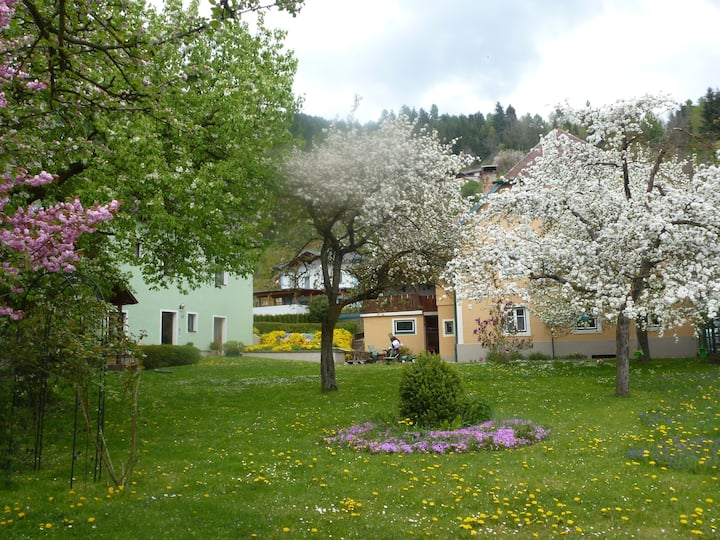 Haus Tamberger-Appartements-St.Stefan-Friesach