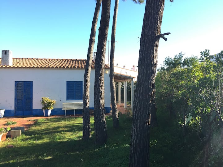 CasAlmograve - Beach House