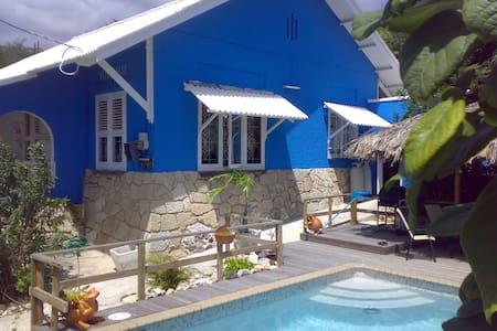 Unique Villa with seaview + pool - Willemstad - Villa