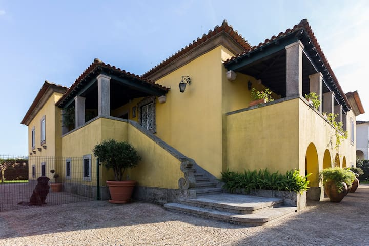 Charming Antas House - Green Suite