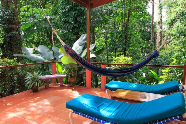 One of a kind Jungle Studio  - Quepos