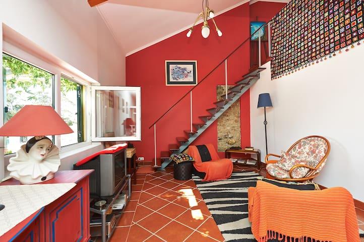 """""""CROCOS' HOUSE"""" - Casa de Campo - Runa - Willa"""