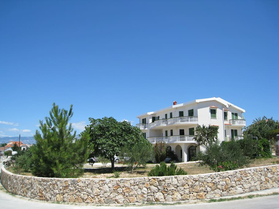 Side view of the apartment house and olive tree garden