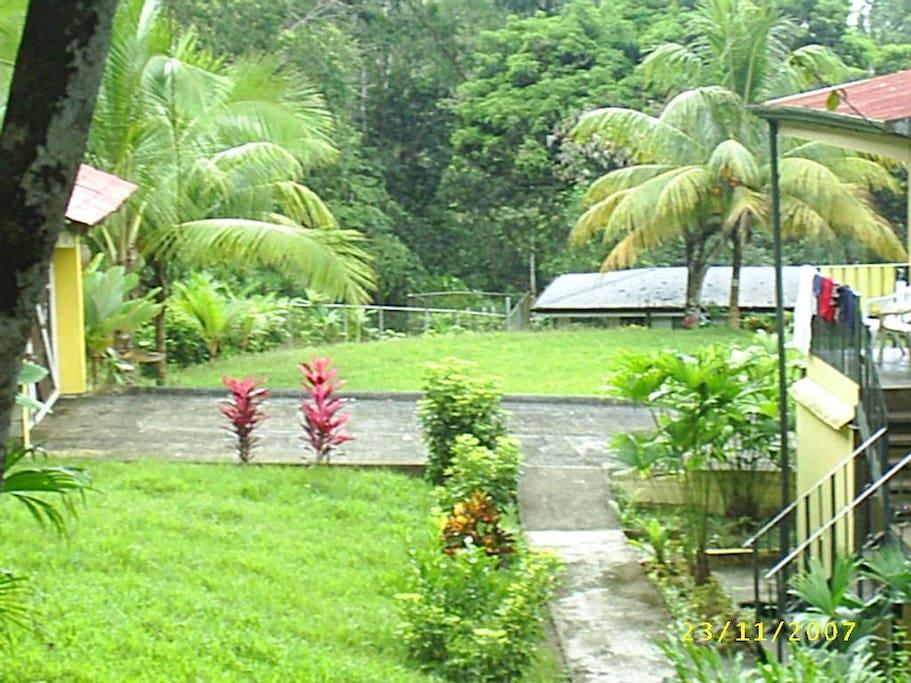 Amplias zonas verdes con abundantes plantas hornamentales