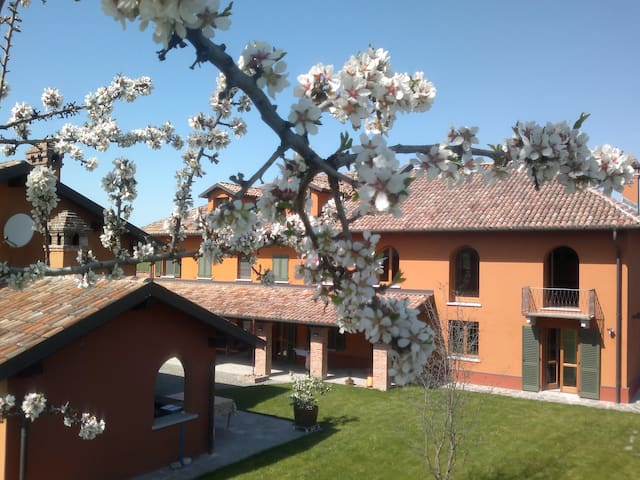 Lovely farmhouse apartment - Nizza Monferrato - Huoneisto