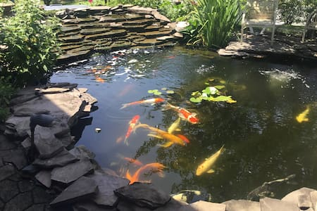 Koi Pond   Heaven with Private Room in Salisbury