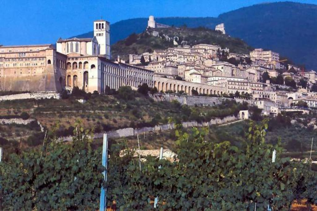 Bed breakfast da elda assisi chambres d 39 h tes louer for Italie chambre d hote