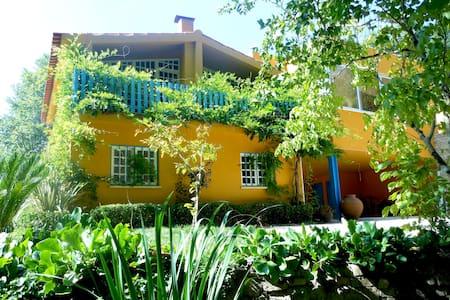 Quinta das Tamengas- Tentúgal  - Villa