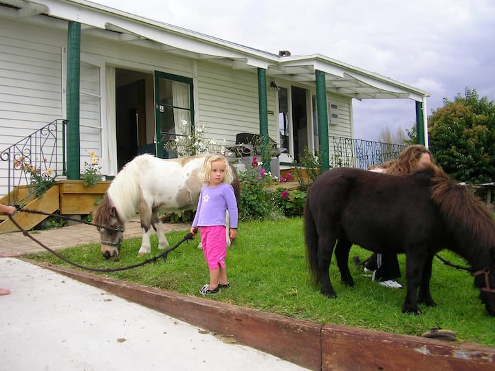 Waitomo Big Bird B&B & Petting Farm - Bungalow