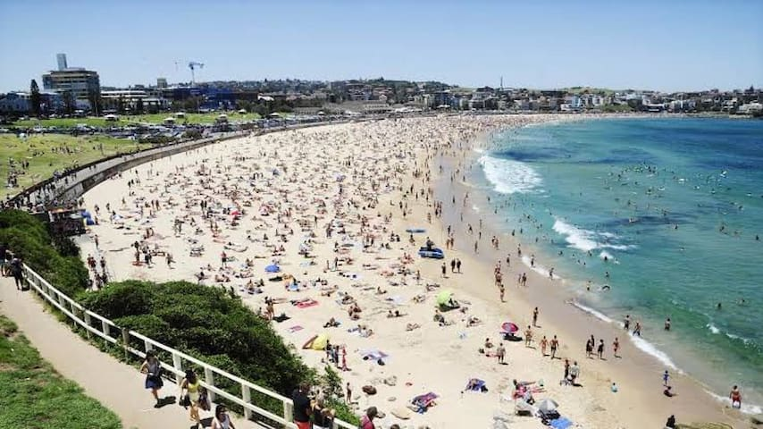 Bondi Central Super Home 10min Train Sydney CBD !