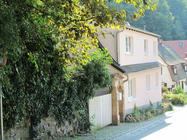 Romantisches Künstlerhaus - Bensheim - House