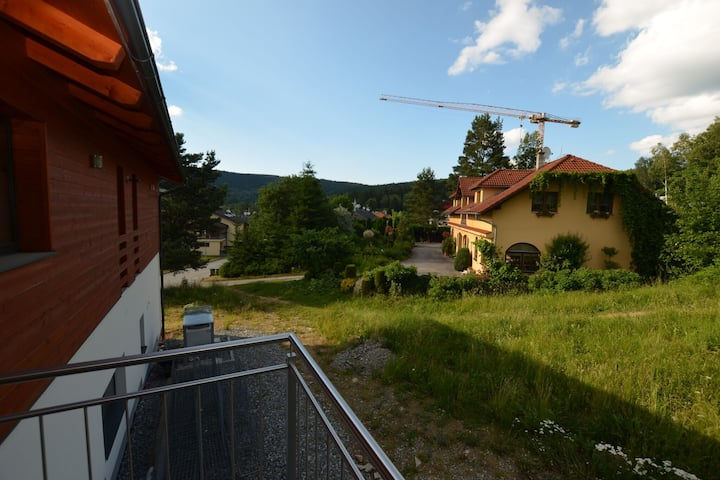 Modern apartment in Lipno 200m from the shore and 800m from the ski lift