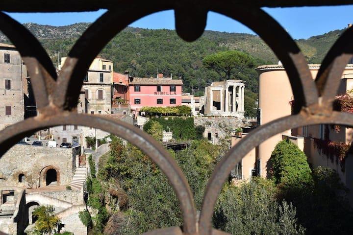 """Casa vacanze  """"al Tempio di Vesta"""" - Tivoli - Huoneisto"""
