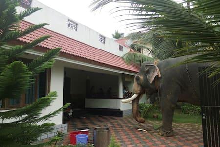COMFY & CHEAP HOMESTAY CLOSE TO THE AIRPORT/CHERAI - Veliyathunadu - Casa