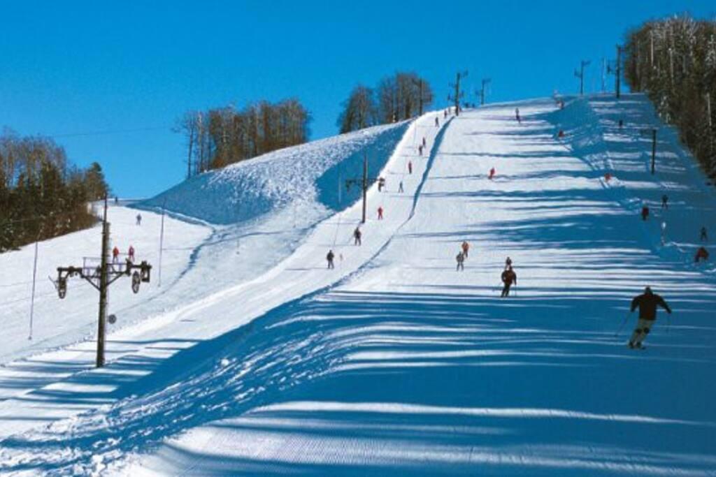 piste de ski la bresse