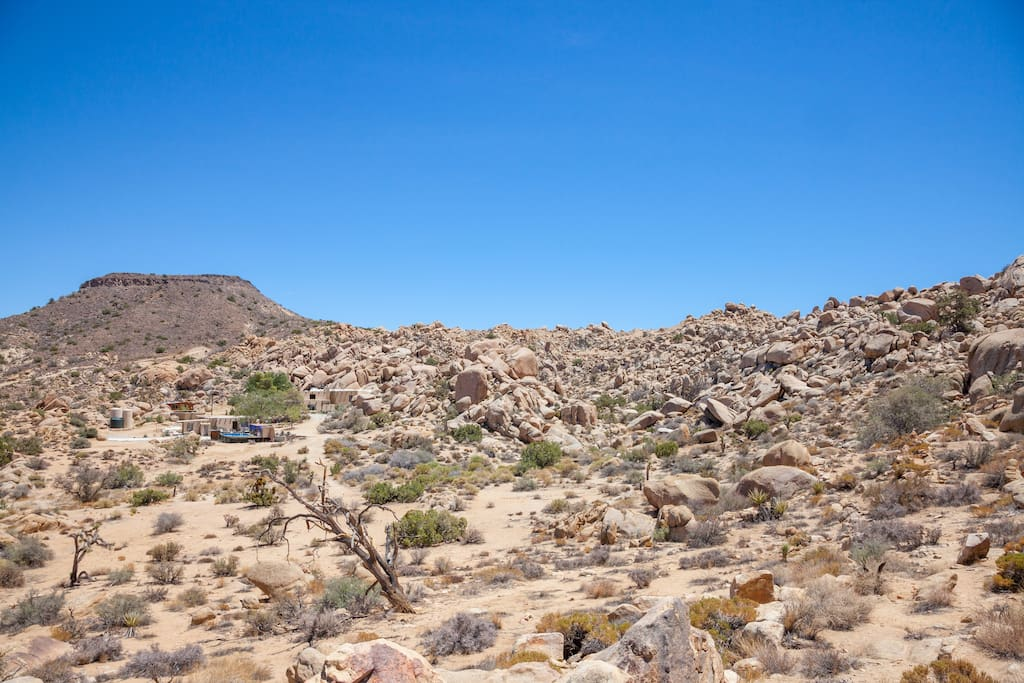 The Joshua Tree area is the only place in Southern California where these flat-top mesas are found. This one is visible from the property.