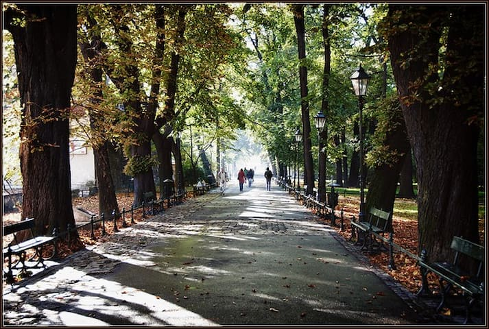 Fantastic parks within the Old Town - ca. 15 meters from the apartment - (c) by Bekop (ATE)