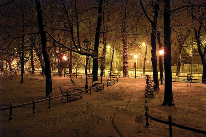 Nearby park (ca. 50 meters away) covered in snow at night - (c) Stanislaw Markowski