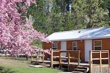 Spring view of duplex cabin