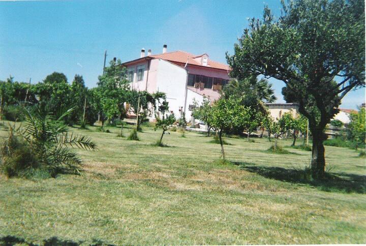 Lovely villa in the green romantica