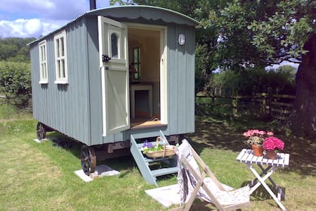 Shepherds' hut in Berriew - Berriew