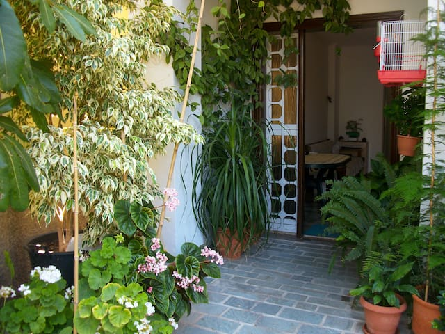 Jasmines pension - Samos Prefecture - Penzion (B&B)