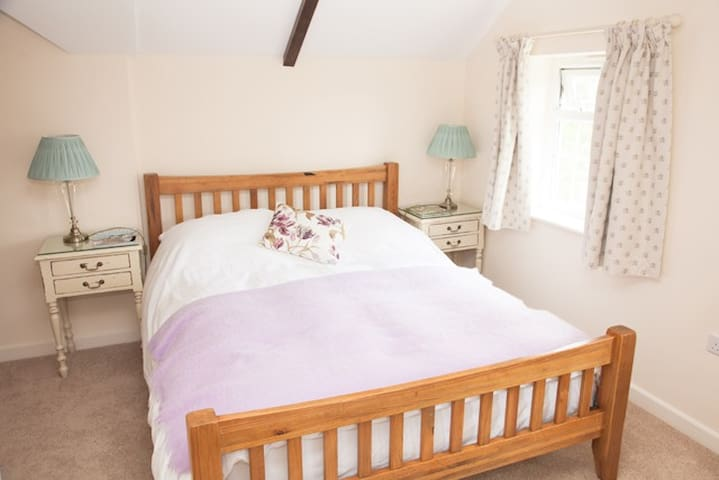 Double room with en-suite bathroom. - Buckland St. Mary's - Bed & Breakfast