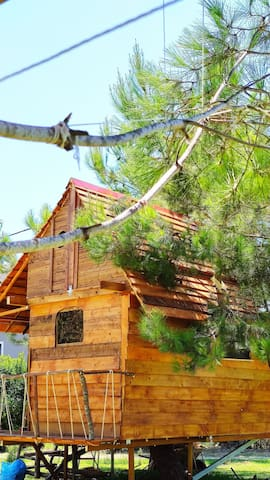 """Ionian Treehouse Ecohosting """" Gea"""""""